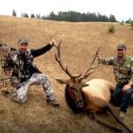 2013 Archery Elk
