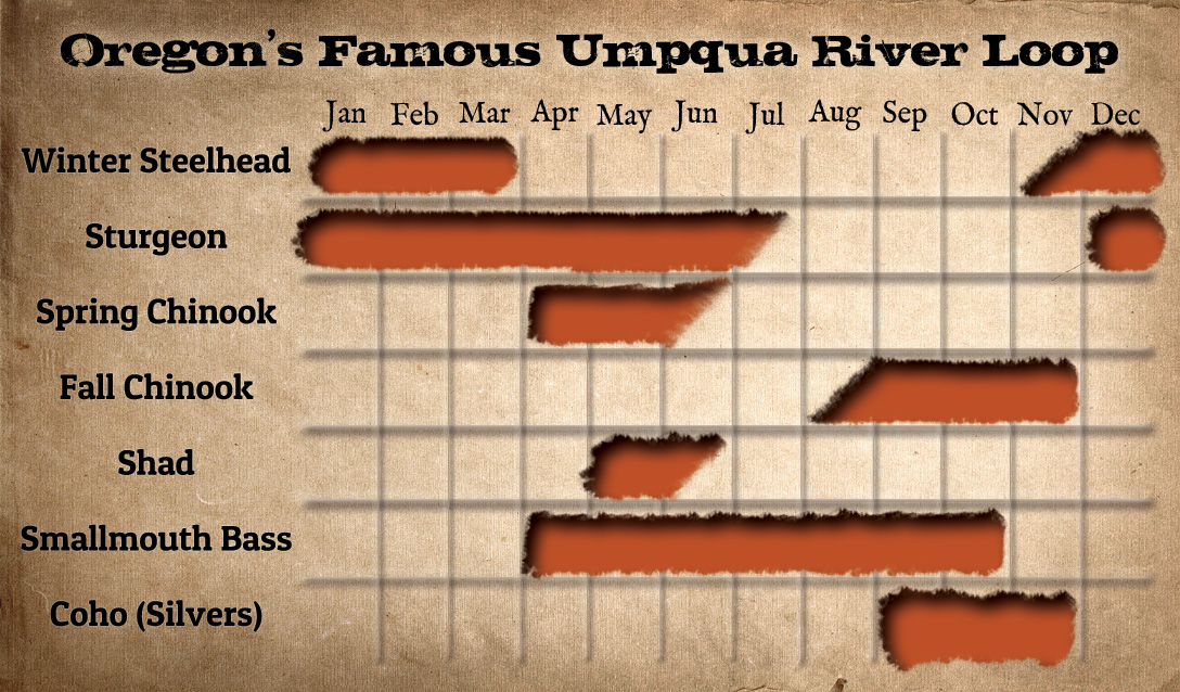 Umpqua River Loop Fishing Calendar