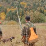 pheasanthunting011