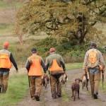 pheasanthunting017