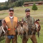 pheasanthunting018