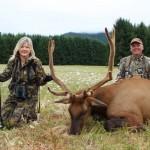 velvet-bull-elk